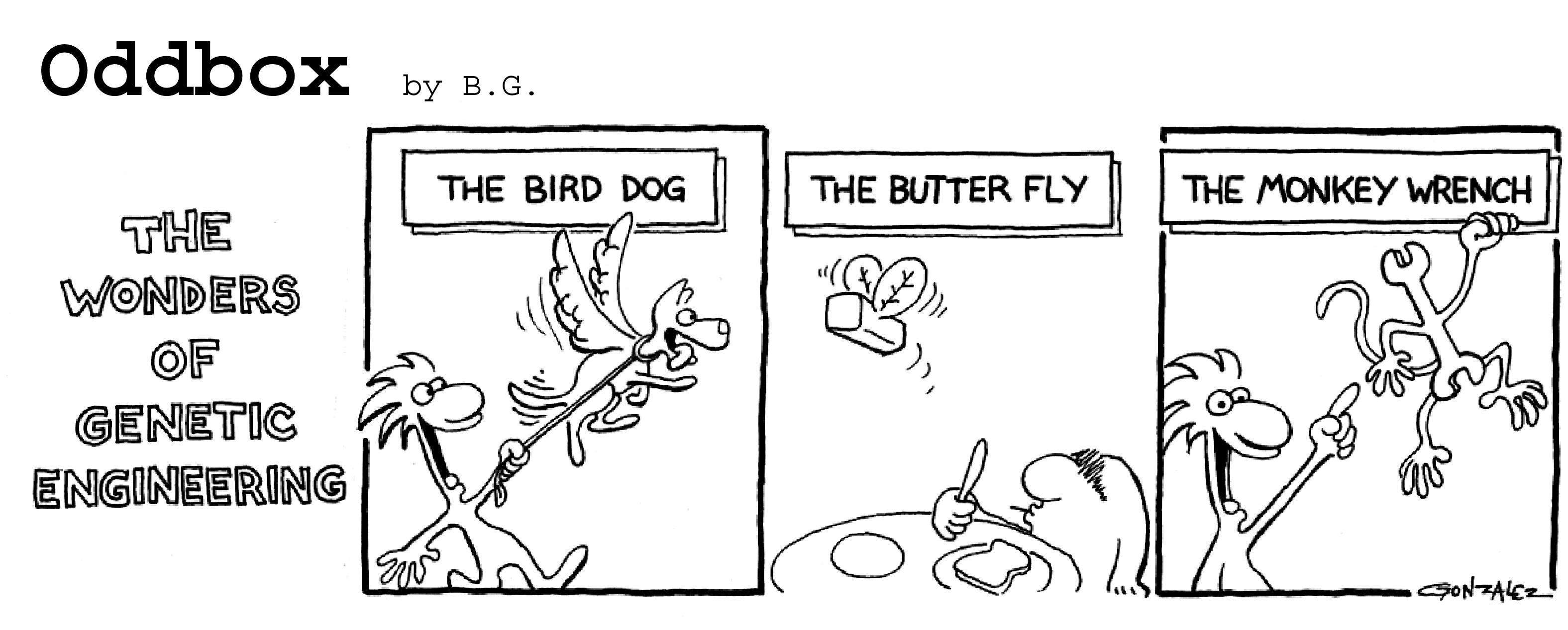 Engineer comic strip